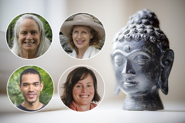 The Way Of The Buddha: 7 Factors of Awakening | Narayan Liebenson